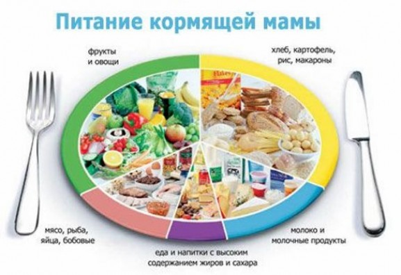 Общие рекомендации для кормящих мам на пути к похудению